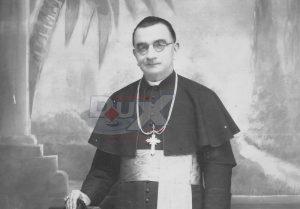 biskuppavaobutorac